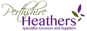 Perthshire Heathers